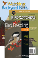 LIMITED-TIME OFFER: Winter Bird Feeding Special!