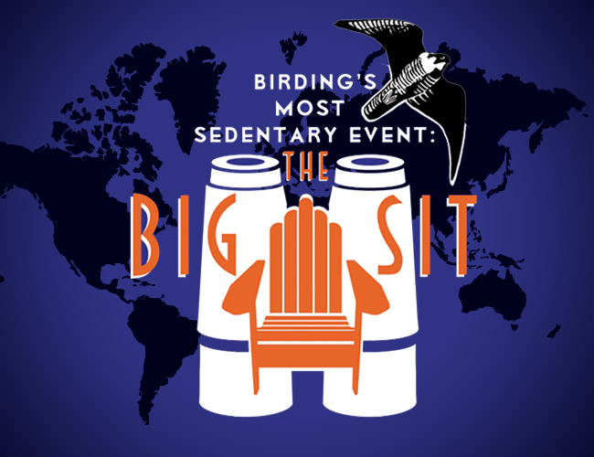 The Big Sit!™ 2018: Birding's Most Sedentary Event!—October 13 & 14, 2018