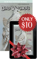 SPECIAL OFFER: Give the Gift of BWD!