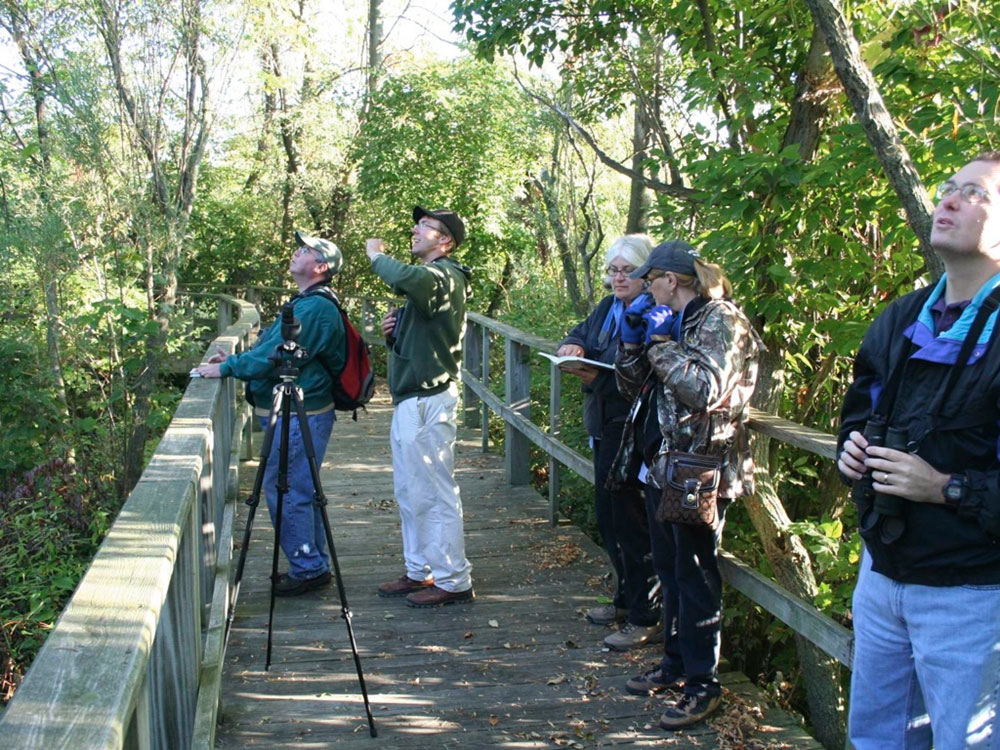 Birders on the boardwalk of the Magee Marsh Wildlife Area in Oak Harbor, OH. Photo by Jim McCormac.