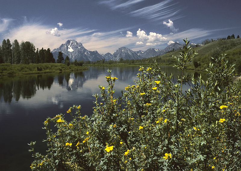Oxbow Bend outlook in the Grand Teton National Park. Photo by Michael Gäbler / Wikimedia.