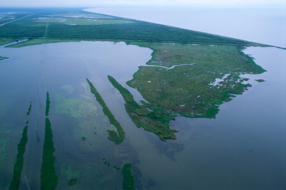 Louisiana wetlands (aerial view) by Ryan Hagerty / USFWS.