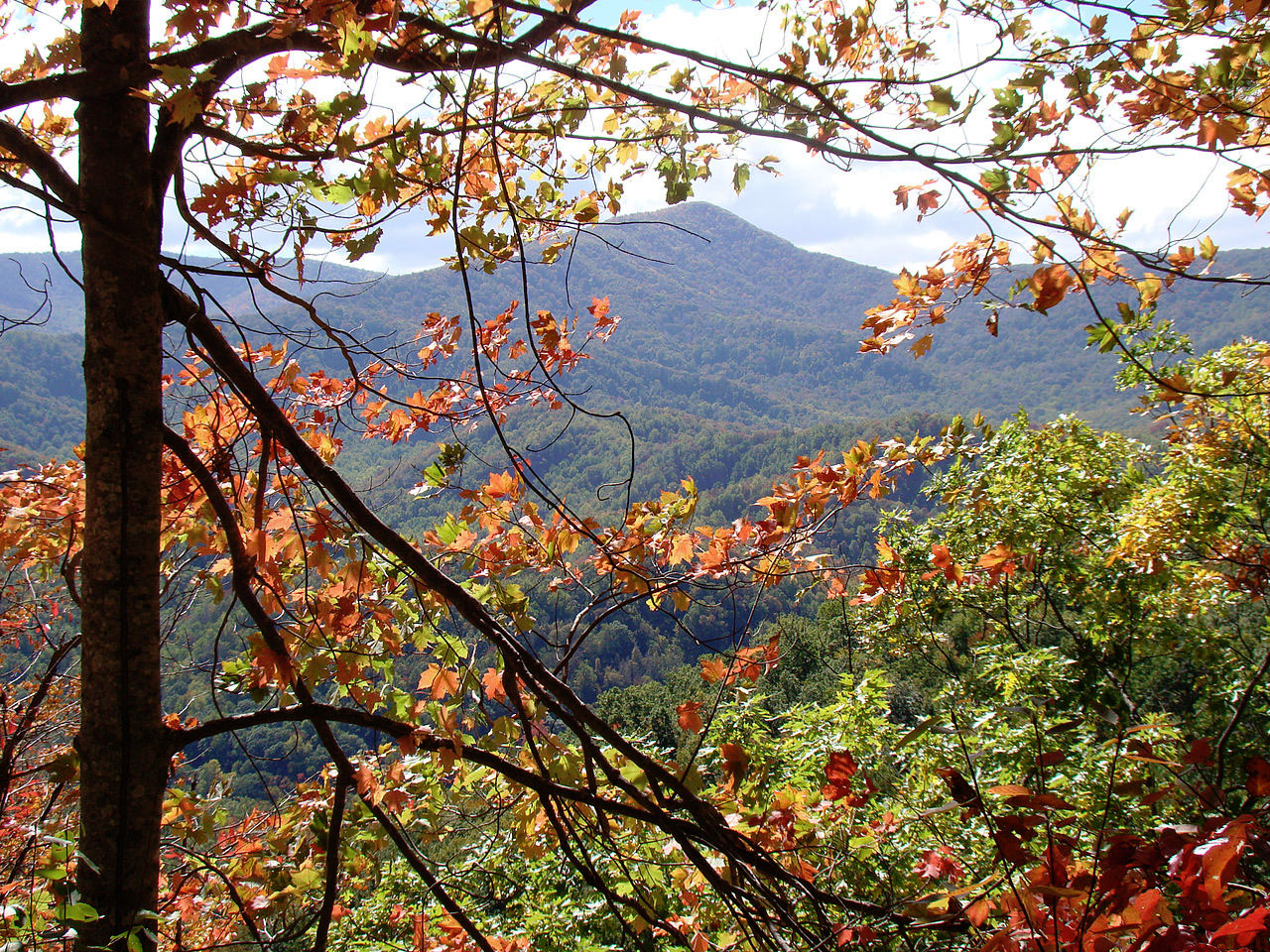 Great Smoky Mountains National Park, Tennessee. Photo by Wikimedia.Great Smoky Mountains National Park, Tennessee. Photo by USchick, Wikimedia.