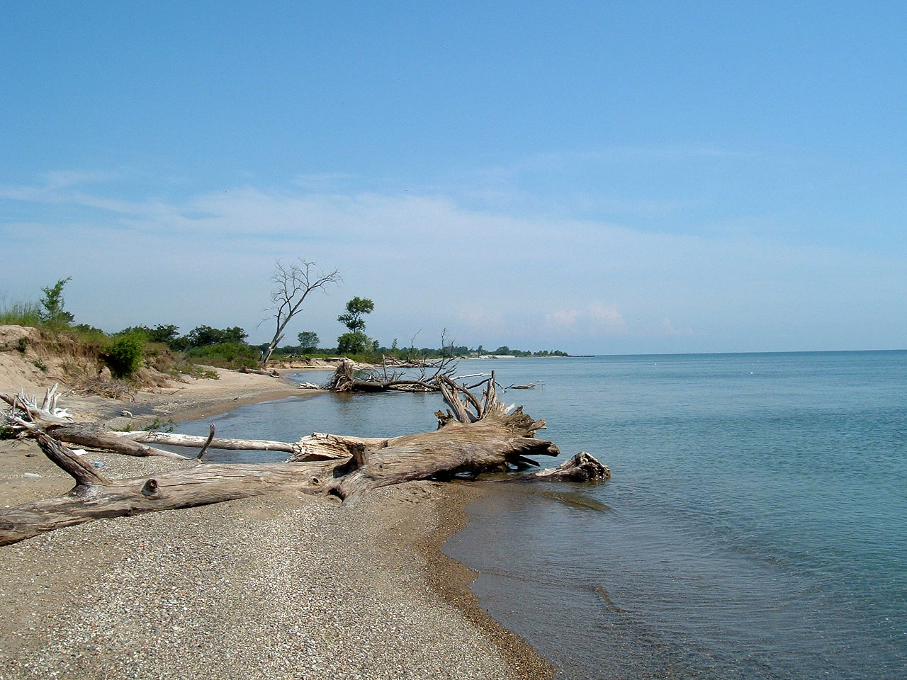 Illinois Beach State Park lakefront. Photo by Wrongdave / Wikimedia