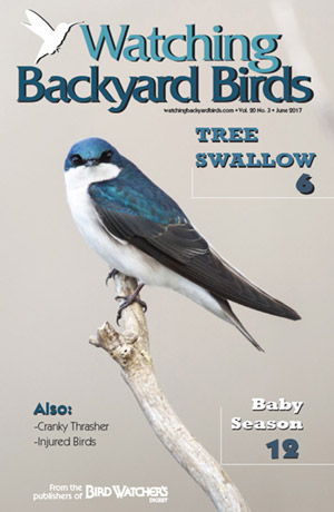 WBB Issues Archive » Page 2 of 3 » Bird Watcher's Digest