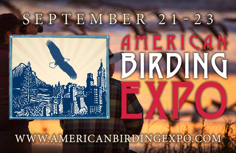 The American Birding Expo: An Event You Don't Want to Miss!