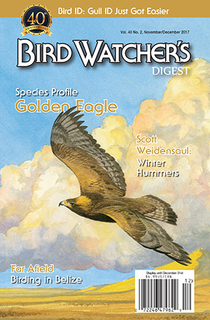 Bird Watcher's Digest November/December 2017