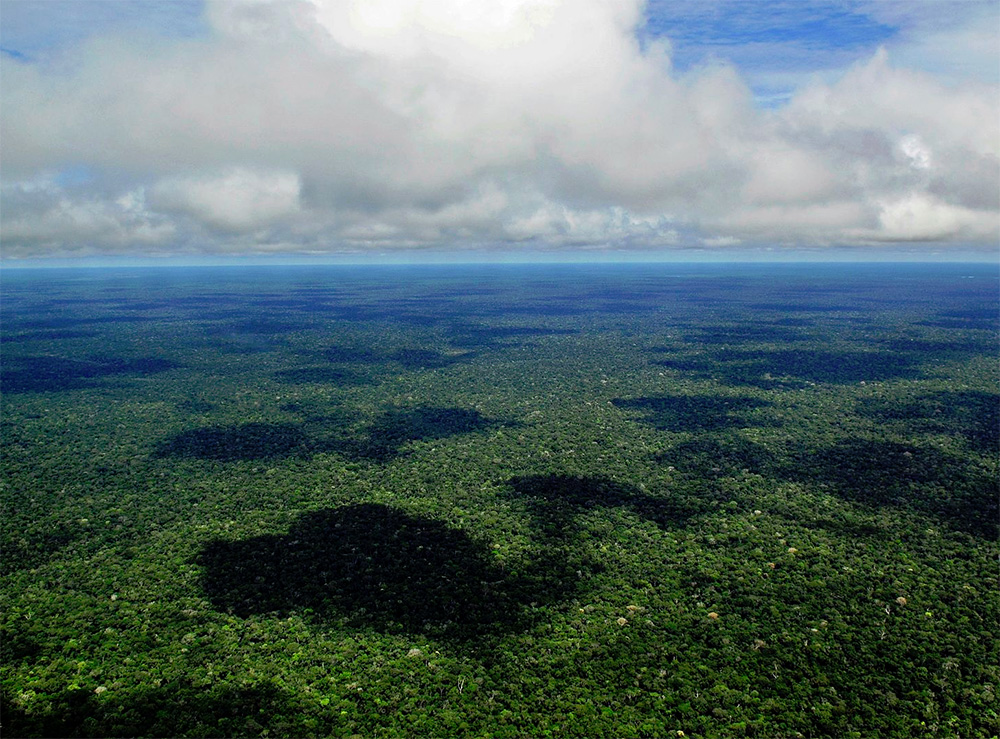An aerial view of the Amazonian rain forest. Photo by Neil Palmer / Wikimedia.