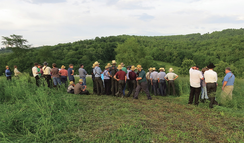 A few counties in Ohio seem to host a disproportionate number of rarities. Contributing author Bruce Stambaugh credits the Amish birders in such places, folks whose work keeps many of them outdoors, and attuned to nature. Photo by Bruce Stambaugh.