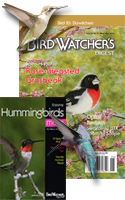 HUMMINGBIRD SPECIAL: Subscribe and save 33%!