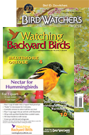 LIMITED-TIME OFFER: Hummingbird Magnet with BWD/WBB Combo!