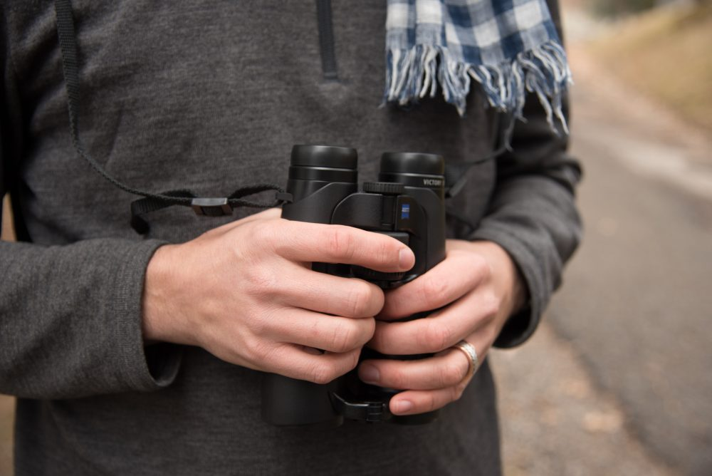 Learn how to deal with bird watching optics in the rain.