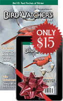 SPECIAL OFFER: $15 BWD Gift Subscriptions!