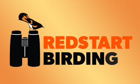 Coming Soon: Redstart on the Road!