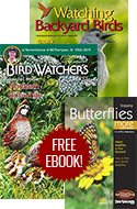 SPECIAL OFFER: Free Butterfly eBook with Your Subscription!