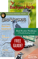 SPECIAL OFFER: SAVE 44% and Solve Backyard Feeder Problems!